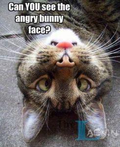 friday funny6